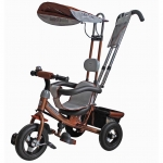 Mini Trike LT-950 A