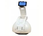 Видеоняня R.Bot Интерактивный робот S